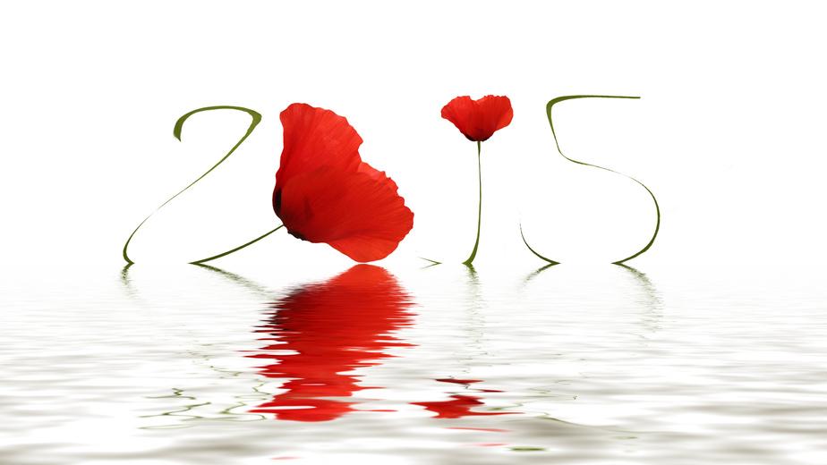 Très belle année 2015!